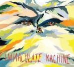Immaculate Machine: High On Jackson Hill
