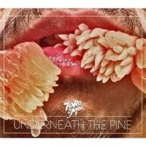 Toro Y Moi: Underneath The Pine