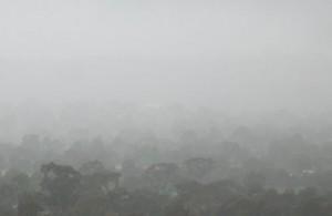 nebel-barto