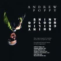 Andrew Poppy: Shiny Floor Shiny Ceiling
