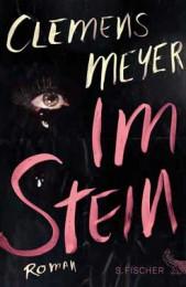 Clemens Meyer_im Stein
