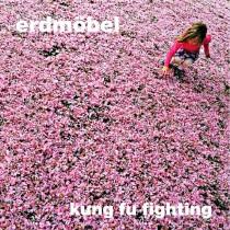 erdmöbel_kungfufighting