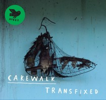 cakewalk_transfixed