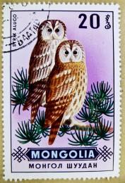 owl stamp_z