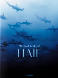 mueller_haie