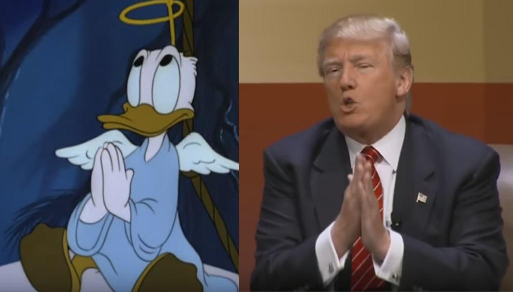 duck2-horz