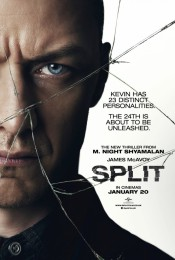 Split Universal Pictures
