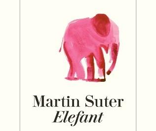 suter_elefant