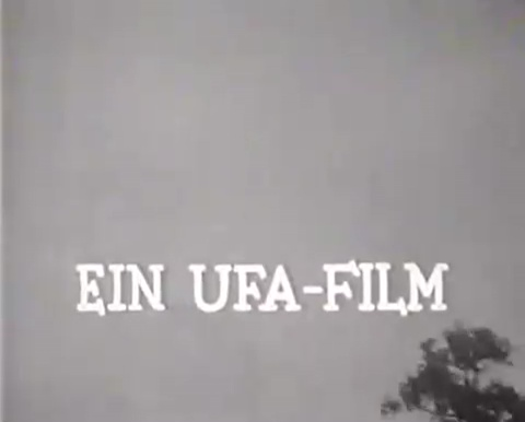 nazifilme mit zarah leander