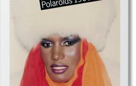 fo-warhol_polaroids-cover_05790