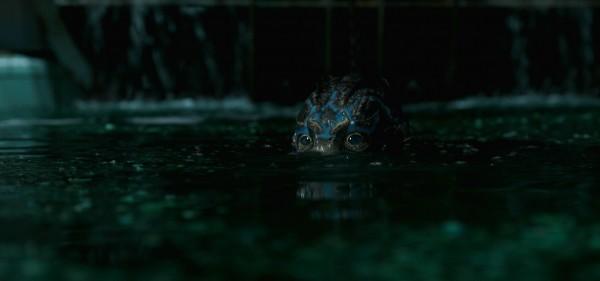 Das Amphibienwesen: Beißt Finger und Katzenköpfe ab, liebt gekochte Eier und Musicals
