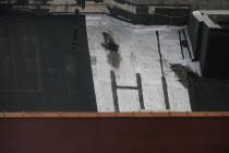 26_rooftop_hi_eauer
