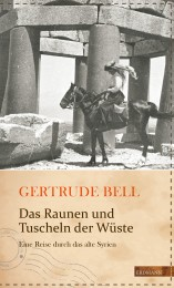 Cover_Reiseschriftstellerinnen.indd