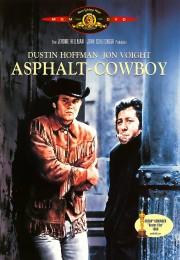 herlihy asphalt-cowboy