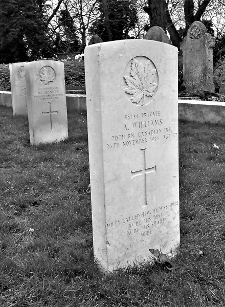 alf williams grave2 (2)