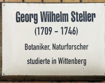 Gedenktafel_Schlossstr_3_(Wittenberg)_wiki Georg_Wilhelm_Steller