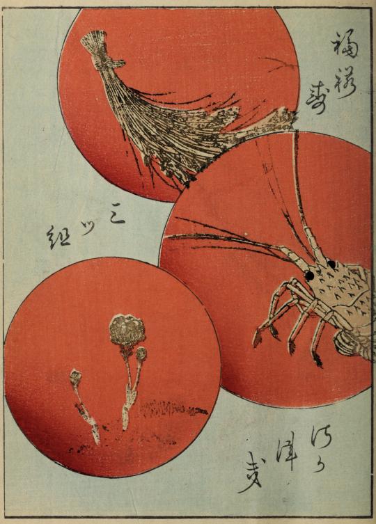 rote Kreise Kimonos