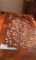 Birgit Haustedt : Puzzle – Das Spiel der Corona-Stunde