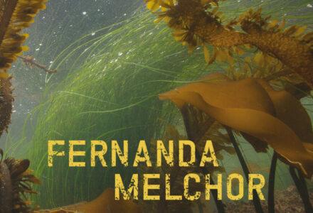 melchor-9783803133380